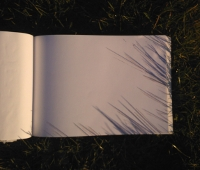 Drawings of the shadows of grass blade