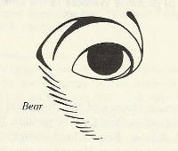 the eye of a bear, from Ursula Le Guin's 'Always Coming Home'
